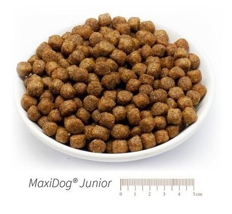 maxidog-junior