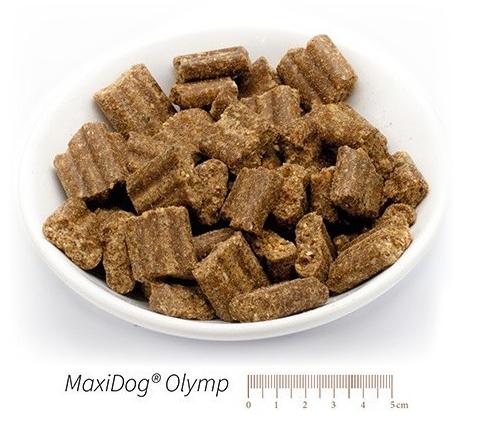 maxidog-olymp-klein